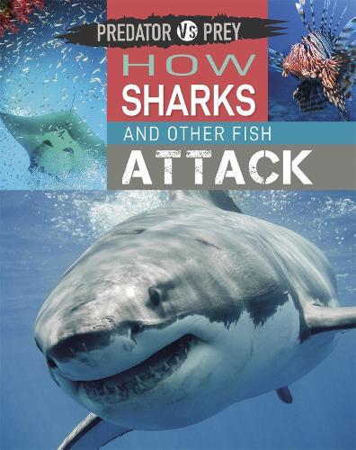 Predator vs Prey: How Sharks and other Fish Attack - Predator vs Prey (Hardback)