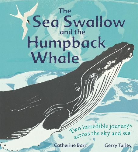 The Sea Swallow and the Humpback Whale: Two Incredible Journeys Across the Sky and Sea (Paperback)