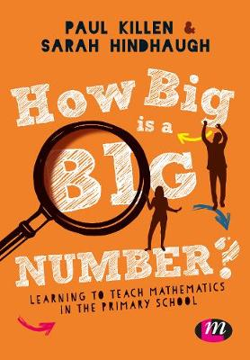 How Big is a Big Number?: Learning to teach mathematics in the primary school (Hardback)