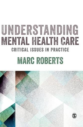 Understanding Mental Health Care: Critical Issues in Practice (Hardback)