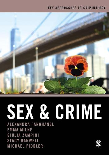 Sex and Crime - Key Approaches to Criminology (Hardback)