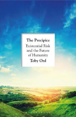 The Precipice (Hardback)