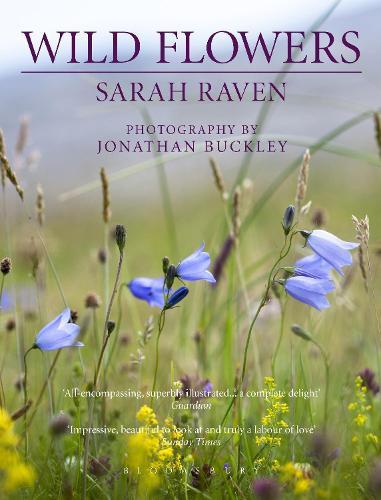Sarah Raven's Wild Flowers (Paperback)