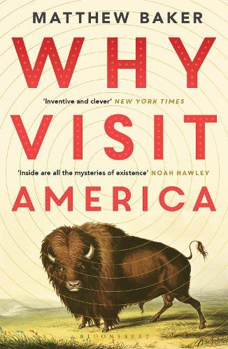 Why Visit America (Paperback)