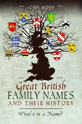 Great British Family Names and Their History: What's in a Name? (Paperback)