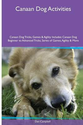 Canaan Dog Activities Canaan Dog Tricks, Games & Agility. Includes: Canaan Dog Beginner to Advanced Tricks, Series of Games, Agility and More (Paperback)