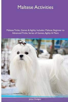 Maltese Activities Maltese Tricks, Games & Agility. Includes: Maltese Beginner to Advanced Tricks, Series of Games, Agility and More (Paperback)