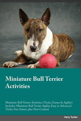 Miniature Bull Terrier Activities Miniature Bull Terrier Activities (Tricks, Games & Agility) Includes: Miniature Bull Terrier Agility, Easy to Advanced Tricks, Fun Games, Plus New Content (Paperback)