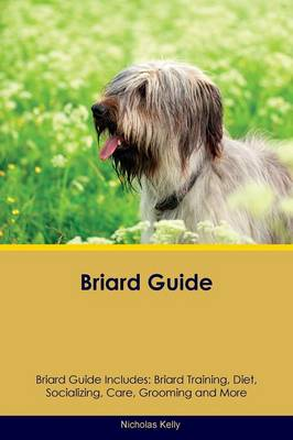 Briard Guide Briard Guide Includes: Briard Training, Diet, Socializing, Care, Grooming, Breeding and More (Paperback)