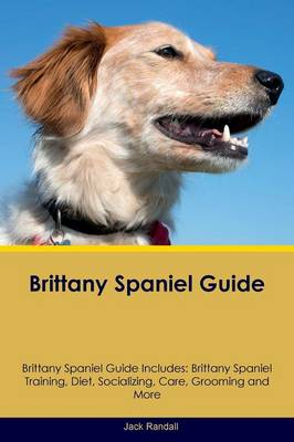 Brittany Spaniel Guide Brittany Spaniel Guide Includes: Brittany Spaniel Training, Diet, Socializing, Care, Grooming, Breeding and More (Paperback)