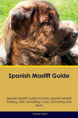 Spanish Mastiff Guide Spanish Mastiff Guide Includes: Spanish Mastiff Training, Diet, Socializing, Care, Grooming, Breeding and More (Paperback)