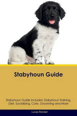 Stabyhoun Guide Stabyhoun Guide Includes: Stabyhoun Training, Diet, Socializing, Care, Grooming, Breeding and More (Paperback)