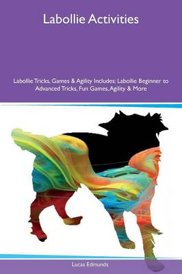 Labollie Activities Labollie Tricks, Games & Agility Includes: Labollie Beginner to Advanced Tricks, Fun Games, Agility & More (Paperback)