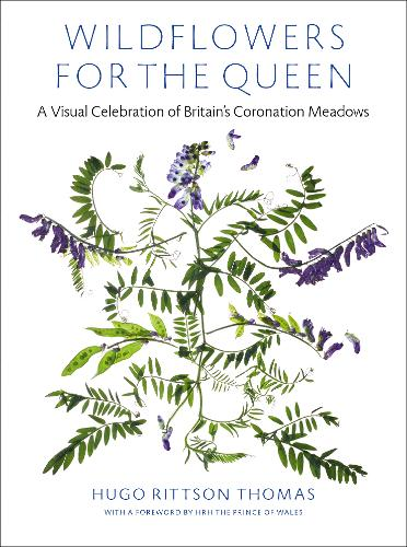 Wildflowers for the Queen: A Visual Celebration of Britain's Coronation Meadows (Hardback)
