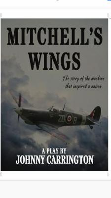 Mitchell's Wings: The story of the machine that Inspired a nation (Paperback)