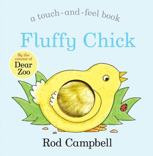 Fluffy Chick (Board book)