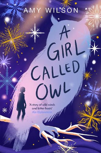 A Girl Called Owl (Paperback)
