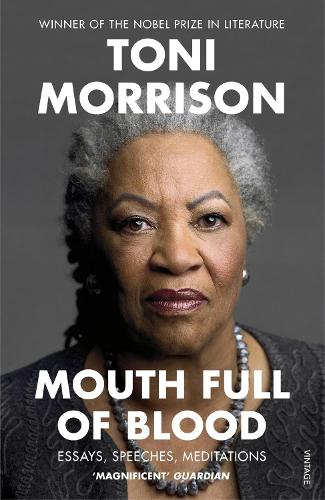 Mouth Full of Blood: Essays, Speeches, Meditations (Paperback)