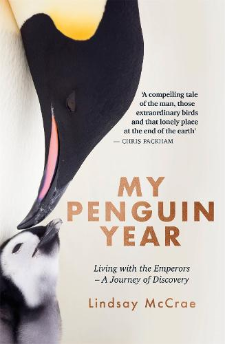 My Penguin Year: Living with the Emperors - A Journey of Discovery (Hardback)