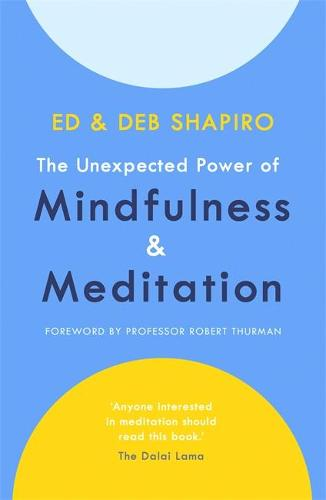 The Unexpected Power of Mindfulness and Meditation (Paperback)
