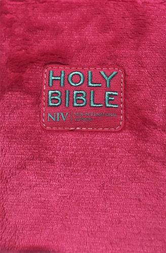 NIV Pocket Sequin Bible (Paperback)