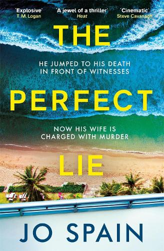 The Perfect Lie (Paperback)