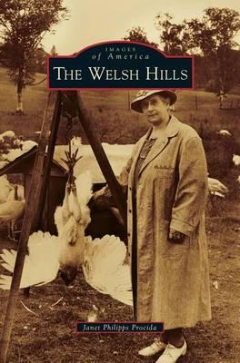 Welsh Hills (Hardback)