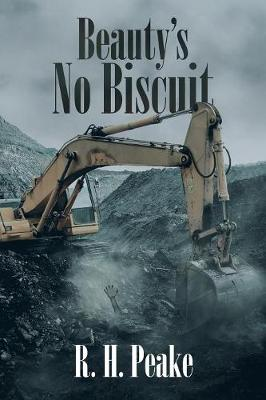Beauty's No Biscuit (Paperback)