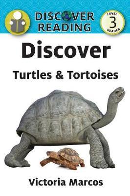 Discover Turtles & Tortoises (Paperback)