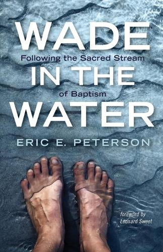 Wade in the Water (Paperback)