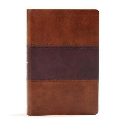 KJV Large Print Personal Size Reference Bible, Saddle Brown Leathertouch Indexed (Leather / fine binding)