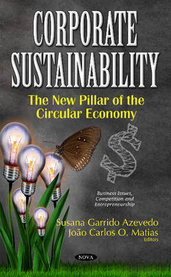Corporate Sustainability: The New Pillar of the Circular Economy (Hardback)