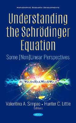 Understanding the Schrodinger Equation: Some [Non]Linear Perspectives (Hardback)