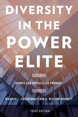 Diversity in the Power Elite: Ironies and Unfulfilled Promises (Paperback)