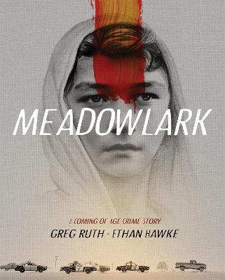 Meadowlark: A Graphic Novel (Hardback)
