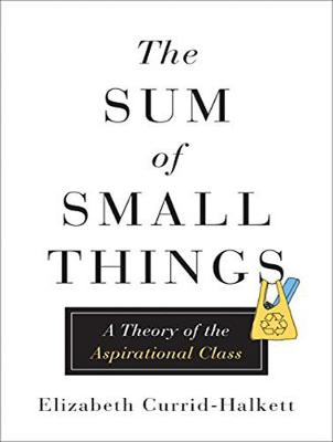 The Sum of Small Things: A Theory of the Aspirational Class (CD-Audio)
