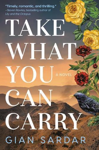 Take What You Can Carry: A Novel (Hardback)