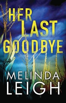 Her Last Goodbye - Morgan Dane 2 (Paperback)