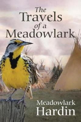 The Travels of a Meadowlark (Paperback)