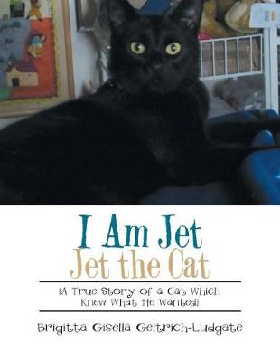 I Am Jet Jet the Cat: (a True Story of a Cat Which Knew What He Wanted) (Paperback)