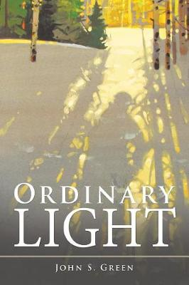 Ordinary Light (Paperback)