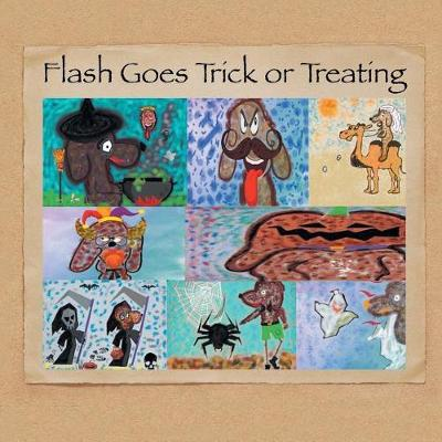Flash Goes Trick or Treating (Paperback)
