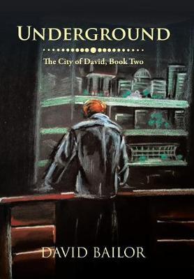 Underground: The City of David, Book Two (Hardback)