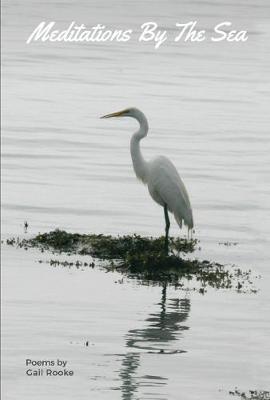 Meditations By the Sea: Poems (Hardback)