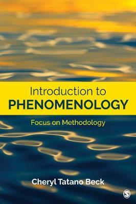 Introduction to Phenomenology: Focus on Methodology (Paperback)