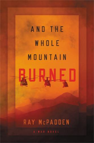 And the Whole Mountain Burned: A War Novel (Hardback)