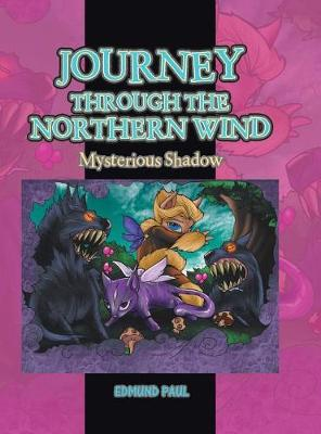 Journey Through the Northern Wind: Mysterious Shadow (Hardback)