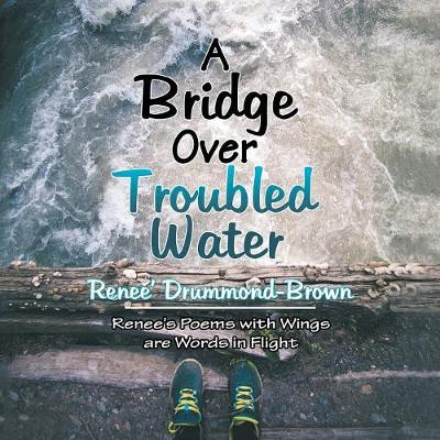 A Bridge over Troubled Water (Paperback)