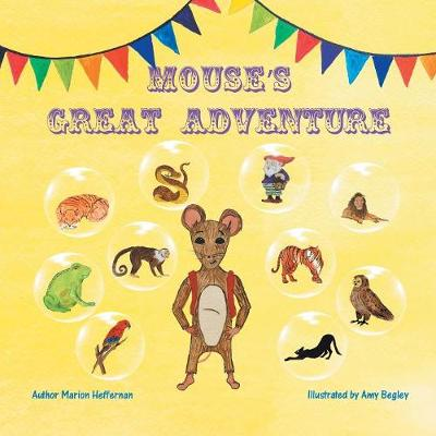 Mouse's Great Adventure (Paperback)