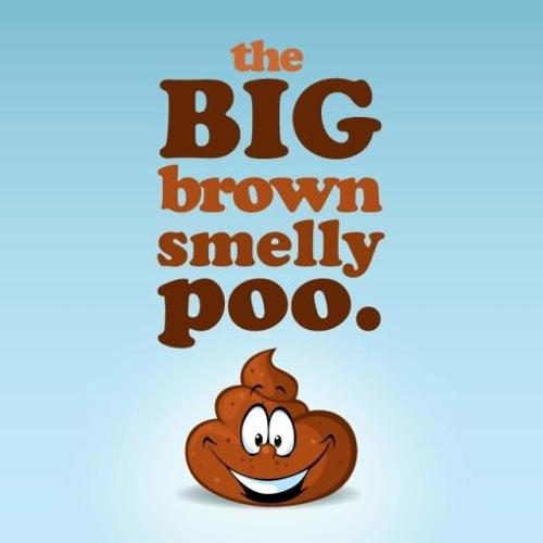The Big Brown Smelly Poo (Paperback)